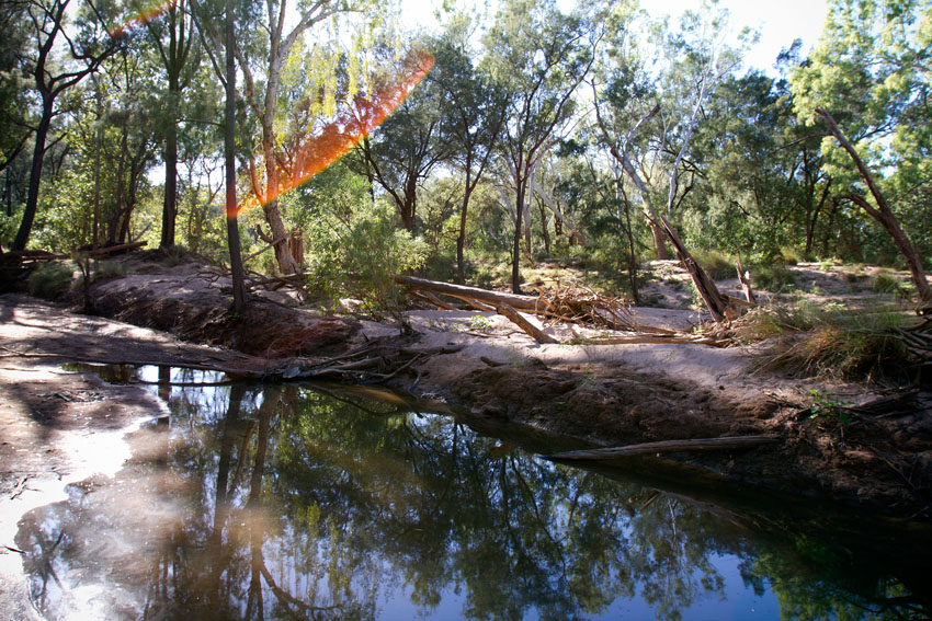 McArthur River,  Phoebe Barton / MPI 2011