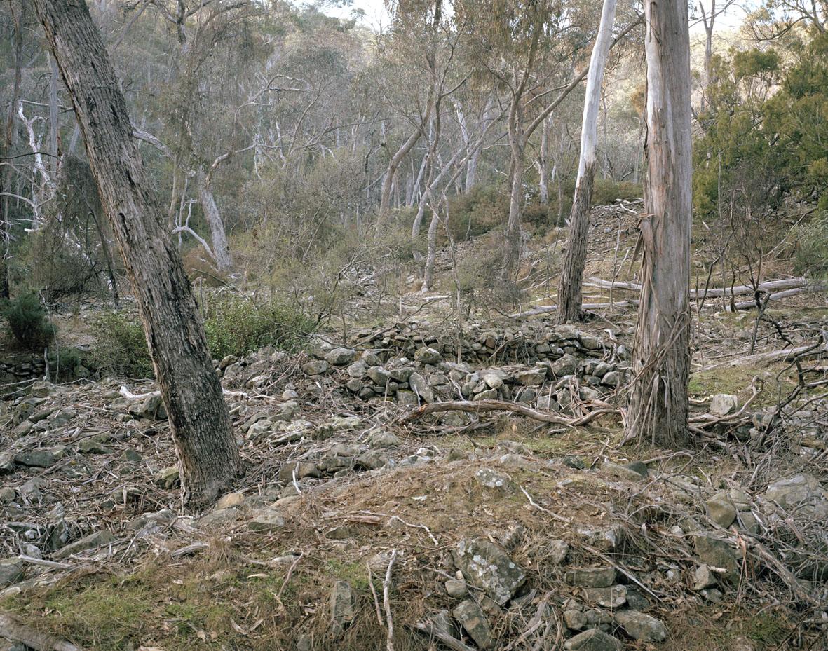 Mistletoe Mine #1, Hepburn, VIC, 2013