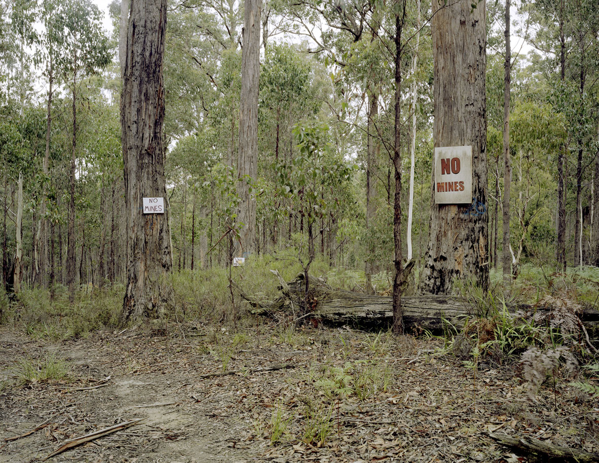 Proposed Gold Mine, Wombat State Forest, Bullarto, VIC, 2013,