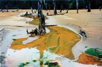 Acid Mine Drainage King River