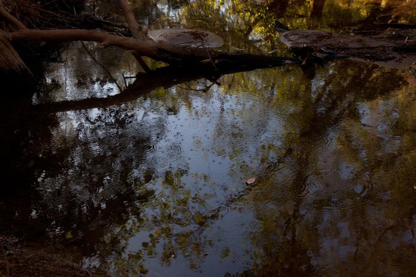 McArthur River, © Jessie Boylan / MPI 2011