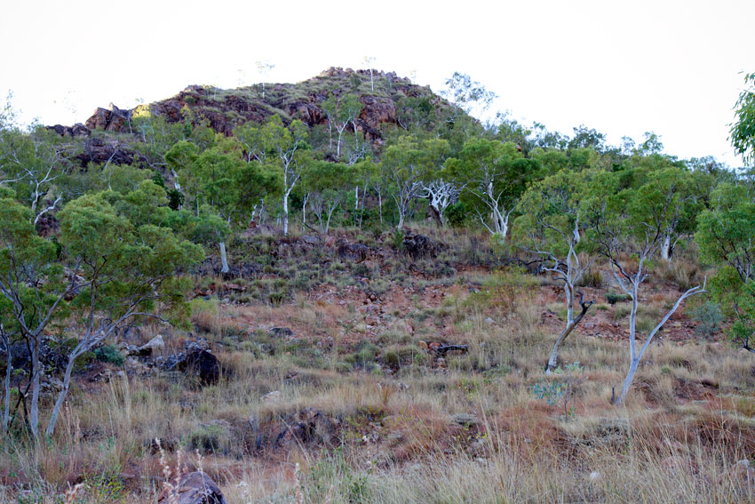 Eva, a former uranium mine in the Northern Territory, © Phoebe Barton / MPI 2011